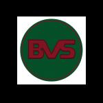 BVS. STONE II CO., LTD